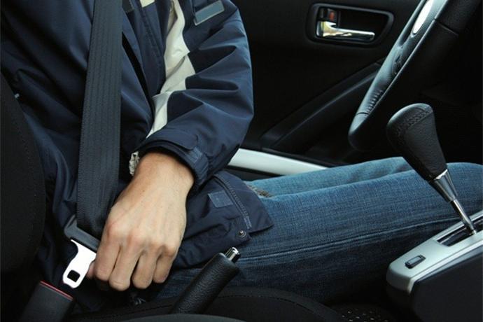 Seatbelts_-3472333156493799490