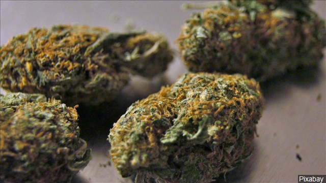 marijuana_1487690055014.jpg