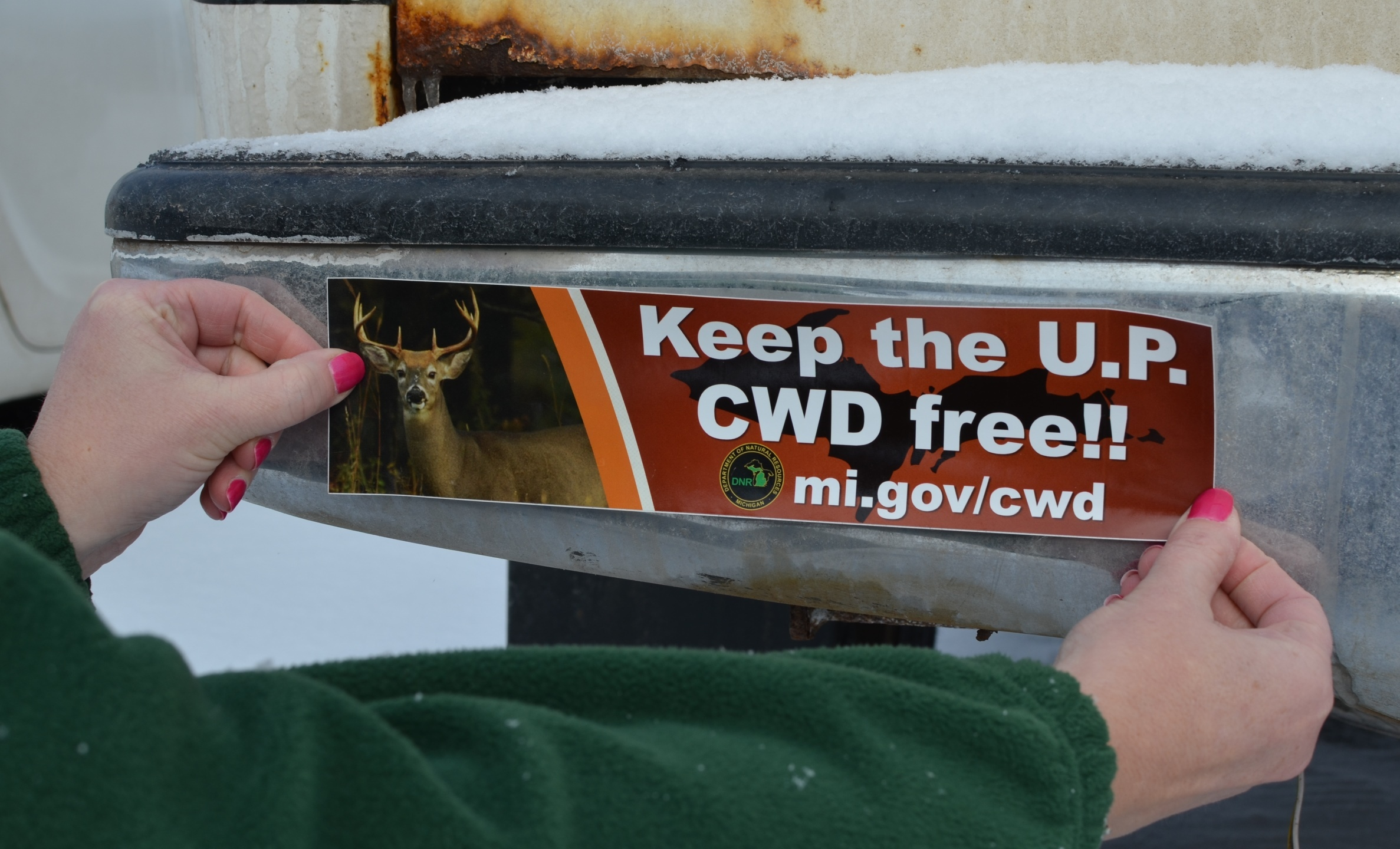Chronic wasting disease_1488493351629.JPG