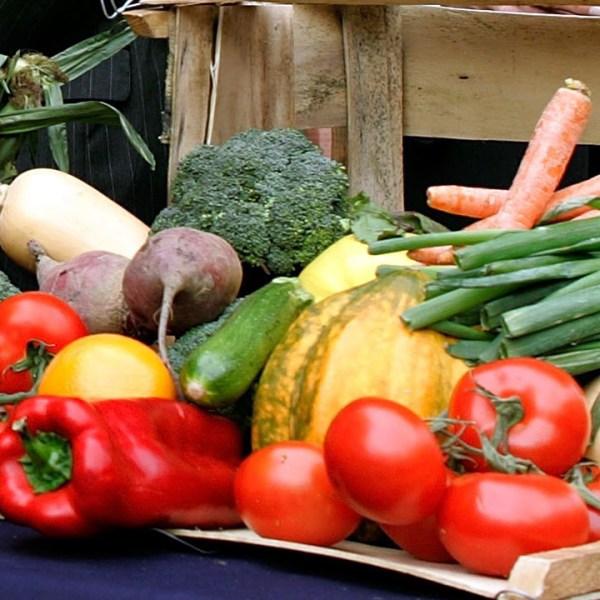 Vegetables_1467740499343_109618_ver1_20170223140703-159532