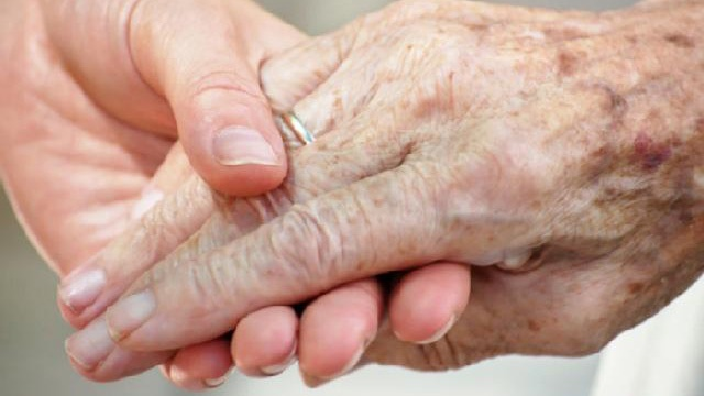 Elderly senior citizen's hand held by younger hand_2662117290177424-159532