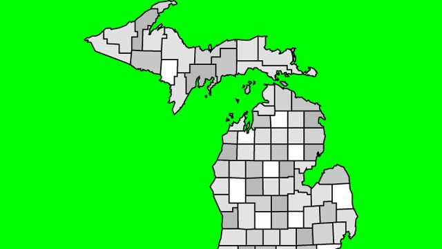 State of Michigan1503334320373.jpg