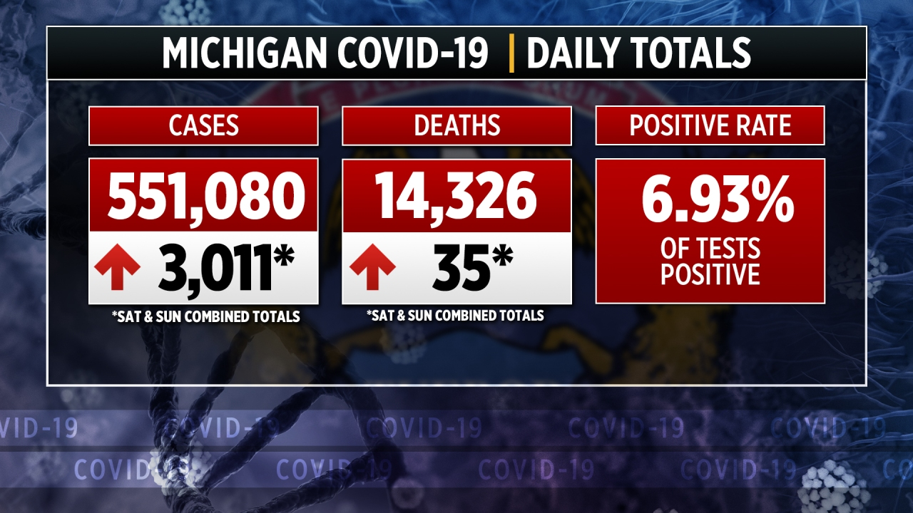 www.upmatters.com: 17 cases of COVID-19 variant identified in Michigan
